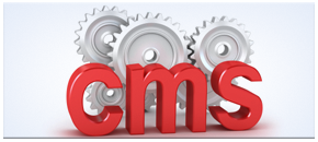 Customized CMS